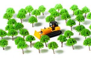 ブルドーザーが森林を伐採している様子