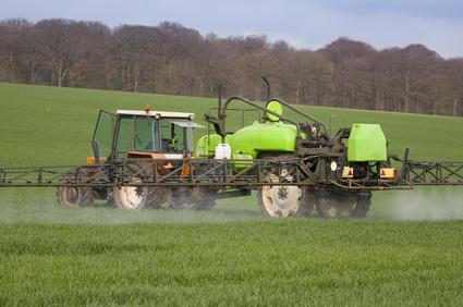 Tracteur pulvérisant du désherbant sur un champ de blé