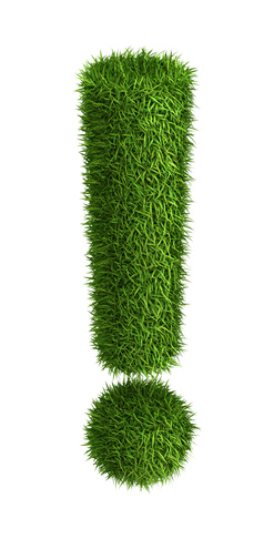 3D exclamation mark  photo realistic isometric projection grass ecology theme on white